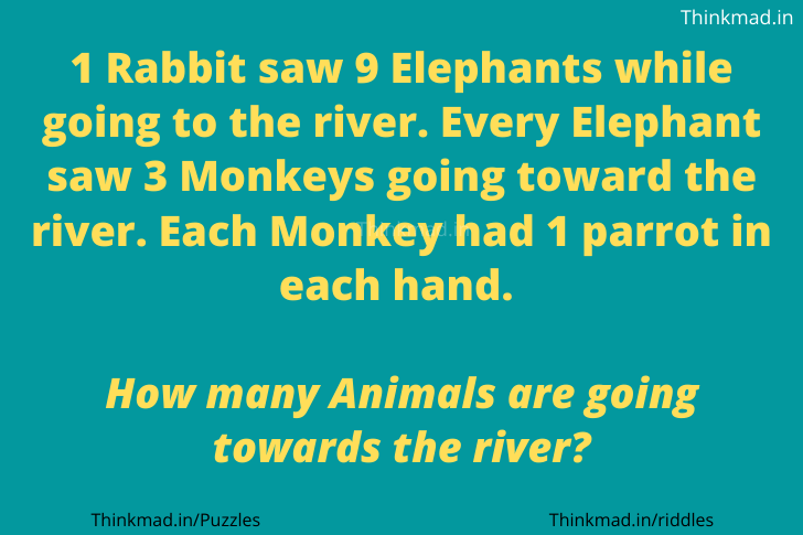 1 Rabbit Saw 9 Elephants Riddle Answer