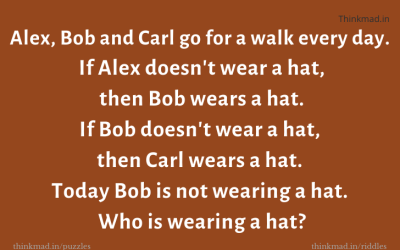 Who Is Wearing A Hat ? – tricky Puzzle
