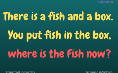 There is a fish and a box.  You put fish in the box, where is the Fish now?