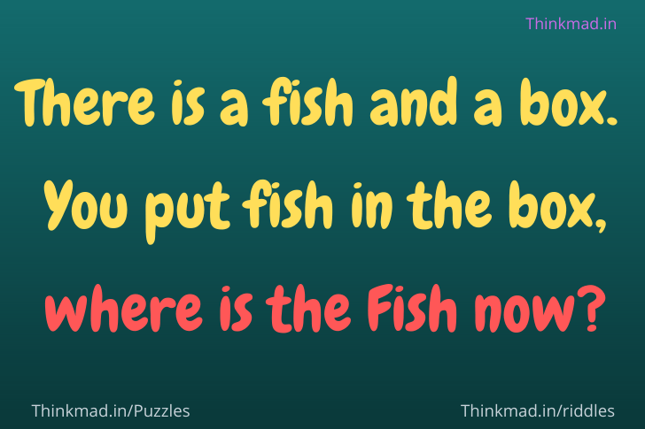 there's a fish in a box riddle answer